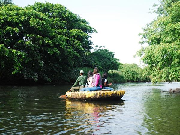 Stay: Jungle Lodges & Resorts, Dandeli